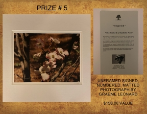 <b>Prize 5</b><br />Dogwood Limited Edition Photograph (value $150)