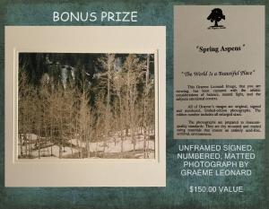 "<b>BONUS PRIZE</b><br />""Spring Aspens"" limited edition photograph (value $150)"